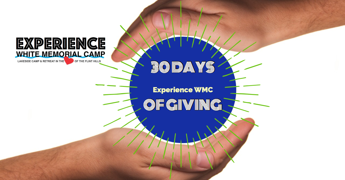 logo 30 days of giving campaign.